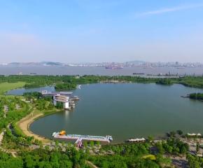 百集微视频《发现泰州之美》第二十六集:靖江绿如蓝