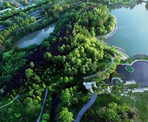 百集微视频《发现泰州之美》第三十一集:迷人的绿岛