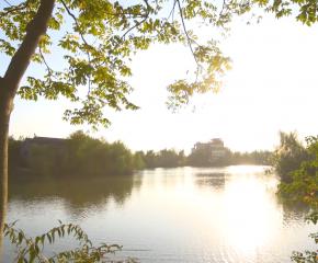 百集微視頻《發現泰州之美》第四十一集:稻香魚肥 天然之居