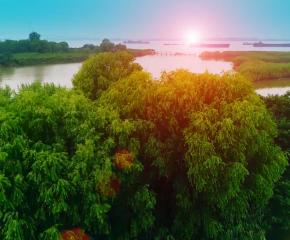 百集微視頻《發現泰州之美》第五十八集:水鄉深呼吸