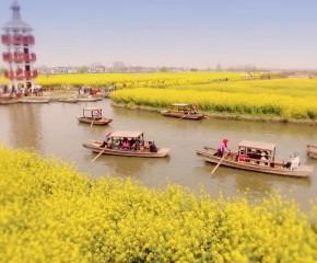 百集微視頻《發現泰州之美》第六十四集:漂洋過海小木船