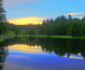 百集微視頻《發現泰州之美》第七十六集:田園牧歌