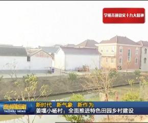 【视频抢鲜看】新时代 新气象 新作为 | 姜堰小杨村:全面推进特色田园乡村建设