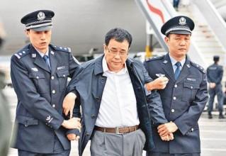 """""""红色通缉令""""2号嫌犯李华波一审被判处无期徒刑"""
