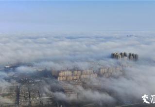 平流霧來襲,泰州城宛如人間仙境!