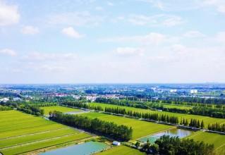 喜訊,國家級!泰州市姜堰區標準化試點通過驗收
