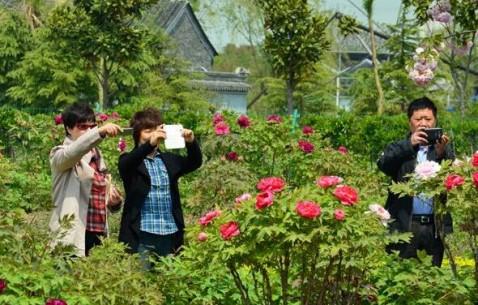麒麟湾生态园:欣赏田园风光 体验自然美景