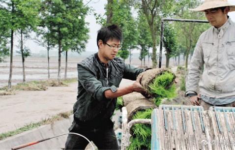 《我苏网》专访:乡村振兴怎么干?我市从乡间走出的省人大代表孙飞有话说