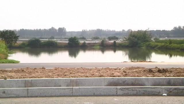 撒花!这条连接姜堰两大景区的快捷通道即将建成通车……