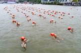 【视觉泰州】2017全国游泳邀请赛泰州开赛