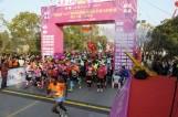 【视觉泰州】泰州首届溱湖湿地国际半程马拉松赛开跑